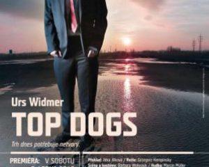 Vstupenky do divadla Top Dogs