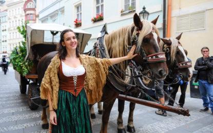 V ostravských hospodách proběhnou oslavy 174. narozenin plzeňského piva