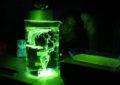 Užijte si vědu bláznivě v českých science centrech, kde to žije ve dne i v noci!