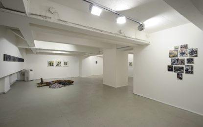 Ostravská Galerie Dole slaví deset let a chystá deset speciálních výstav