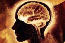 Nečekejte, až si vás najde Alzheimer. Za 21 dní váš mozek ožije od základů díky knize Jasná mysl!