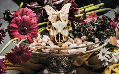 Tajemné kuriozity neboli Kunstkomory se budou vystavovat v Komorní