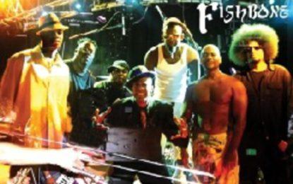 Skupina FISHBONE